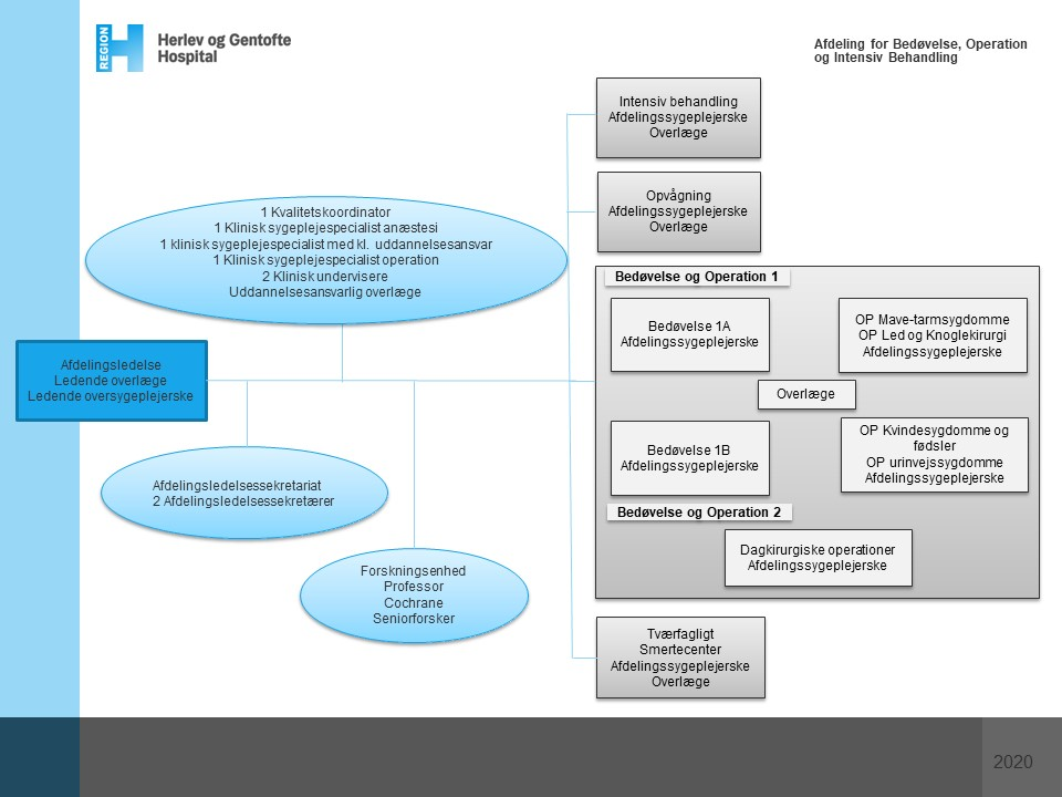 Organisationsdiagram for Afdeling for Bedøvelse, Operation og Intensiv Behandling